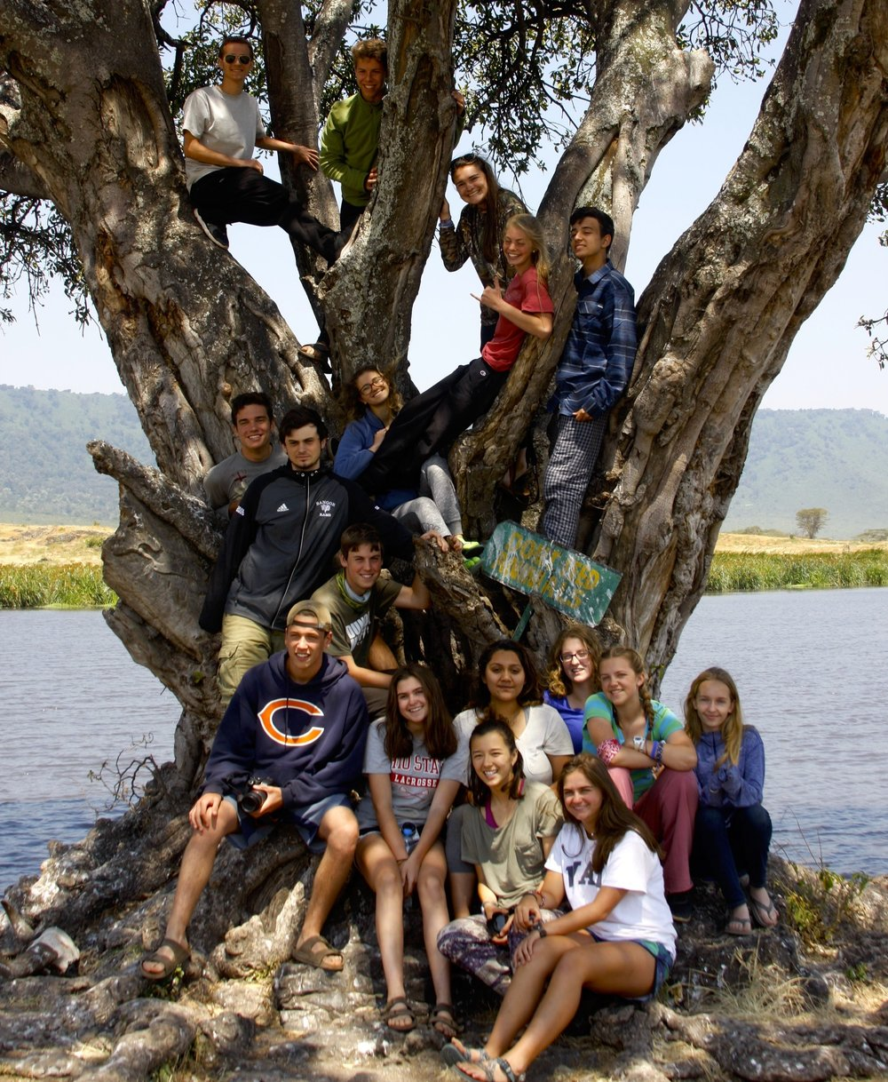 Tanzania Hujambo tree and group for Giselle quote.jpg