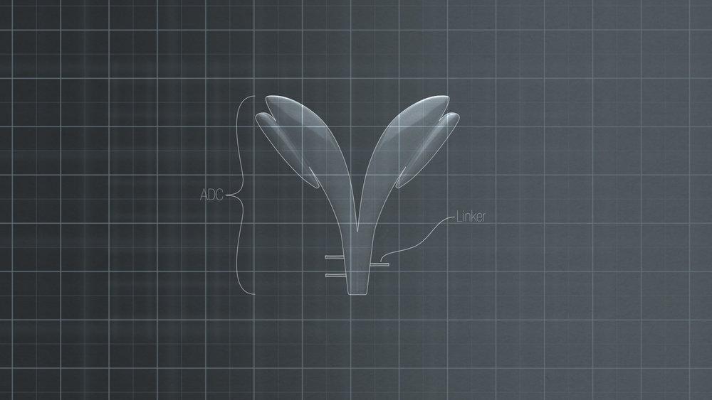 sample-1.jpg
