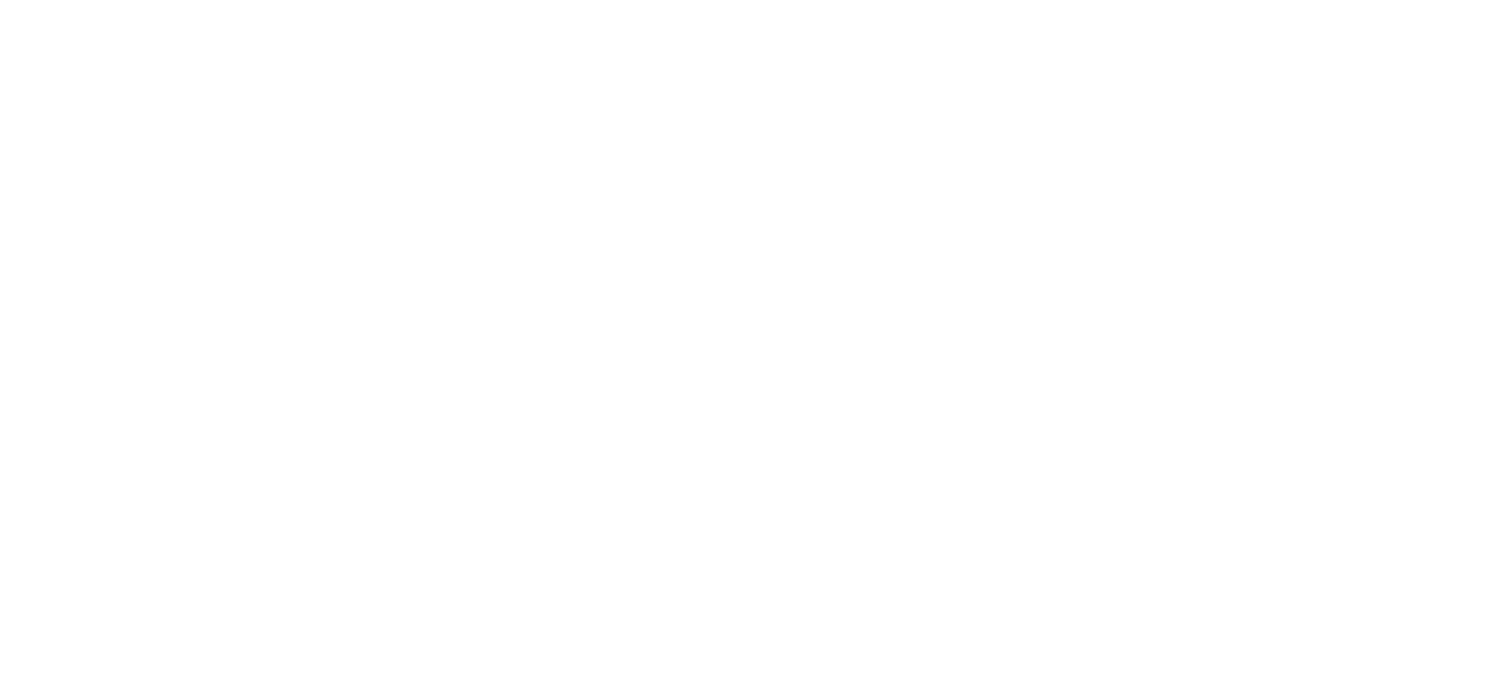 The Black Love Experience