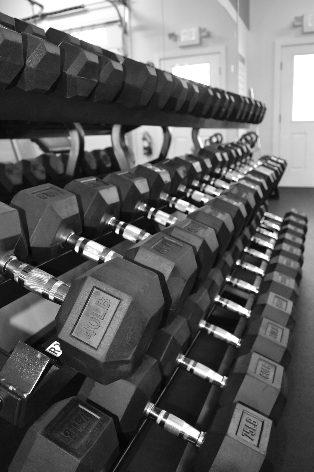 gym weights. free weights. exercise and fitness.JPG