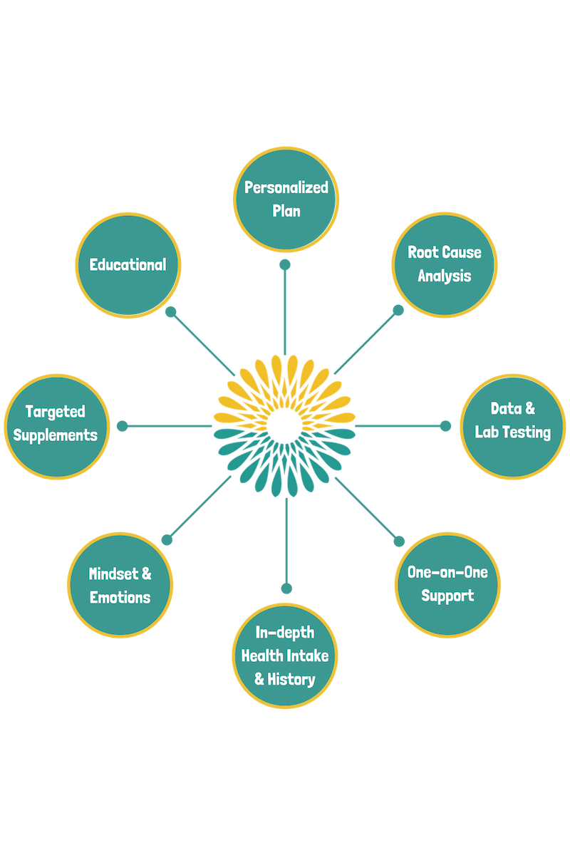 The Vitality Project Wheel (2).png