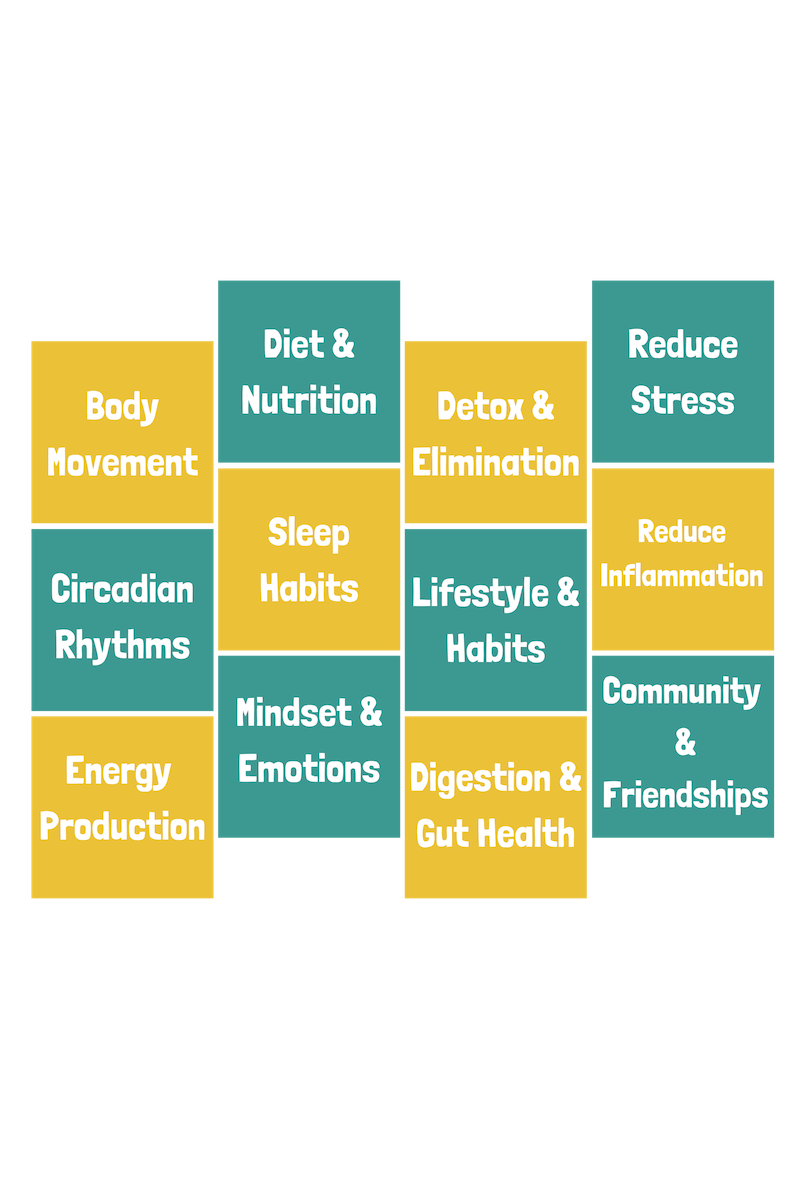 The 12 Fundamentals of Health.png