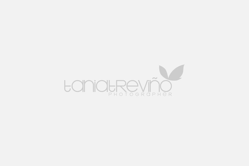 Tania Treviño Photographer: Rediseño de imagen y página web.