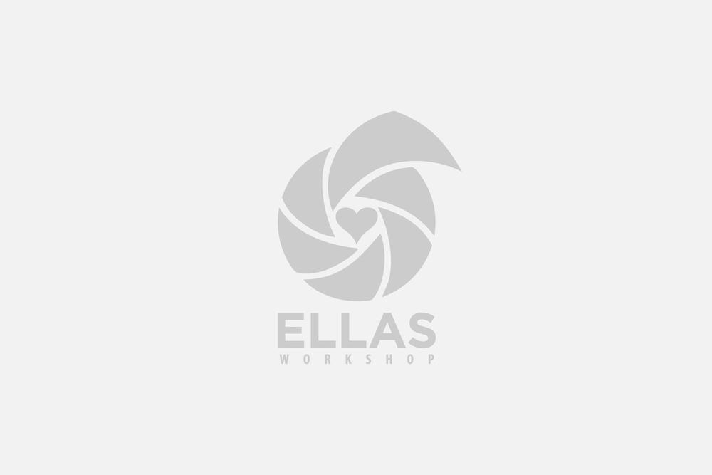 Ellas Workshop: Diseño de imagen y página web.
