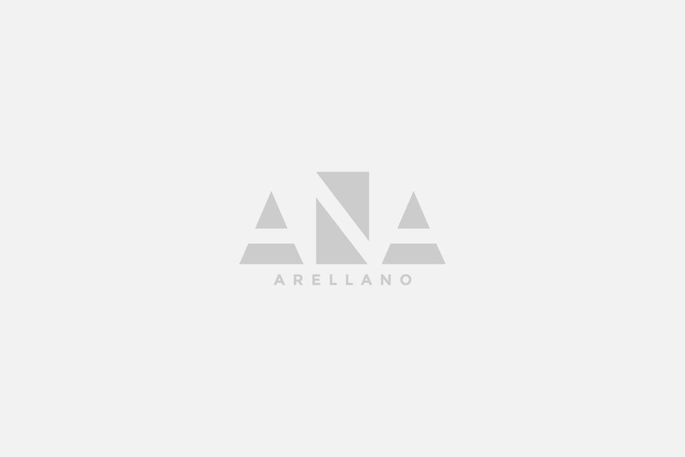 Ana Arellano: Diseño de imagen y página web.