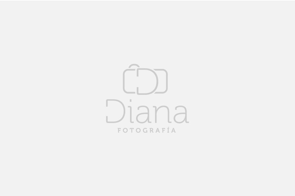 Diana Fotografía: Diseño de imagen y página web.