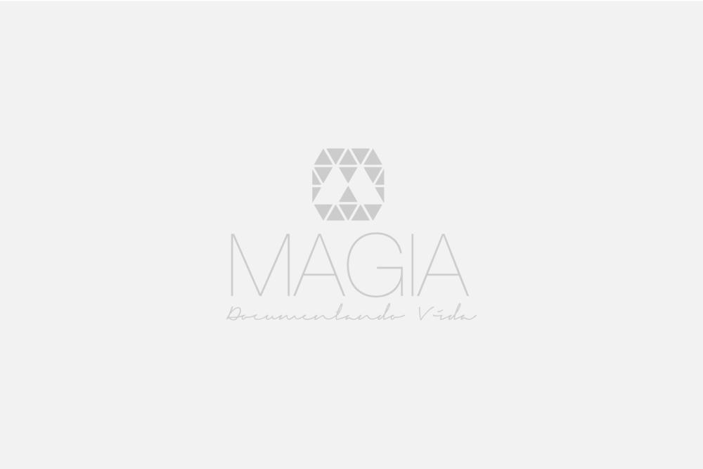 Magia, Documentando Vida: Colaboradora en el diseño de imagen y creadora de la página web.