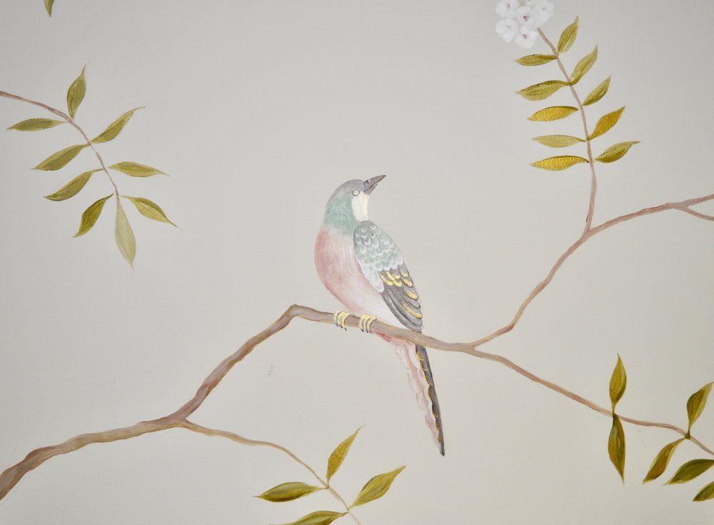 bird, detail