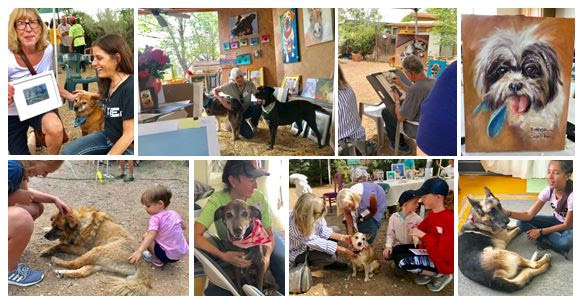 - We celebrated over 15 years of caring for old animals this year at our annual Art Show Fundraiser!