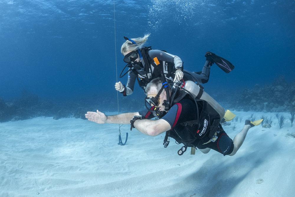 Become a Scuba Divemaster or Instructor with no previous scuba ...