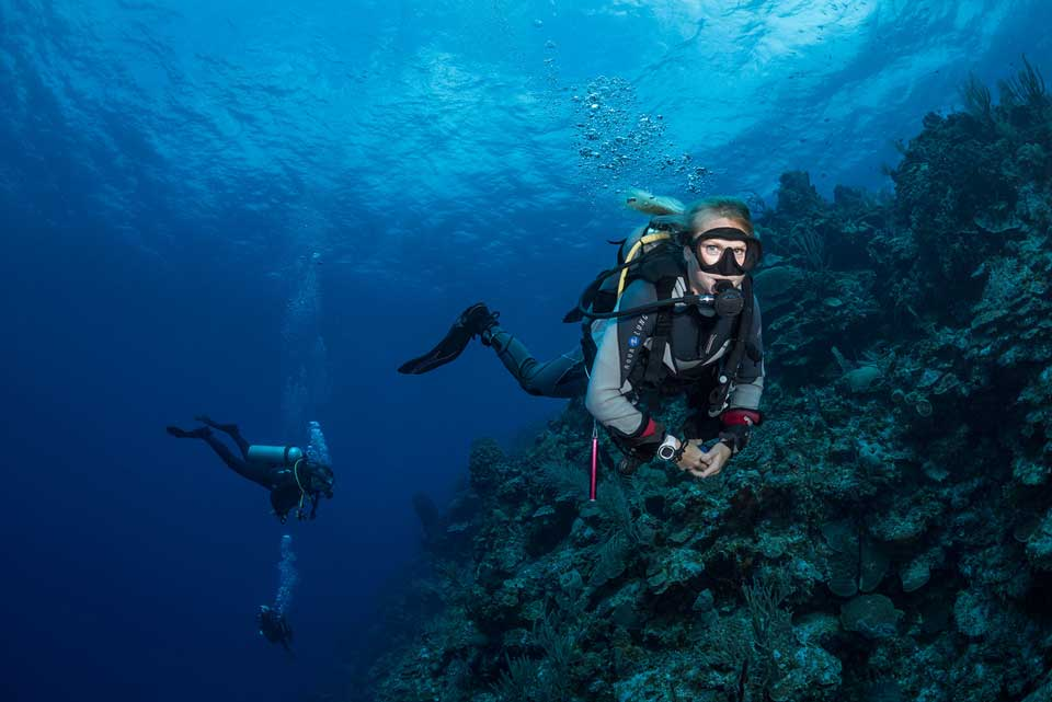 Divemaster guiding divers along the wall