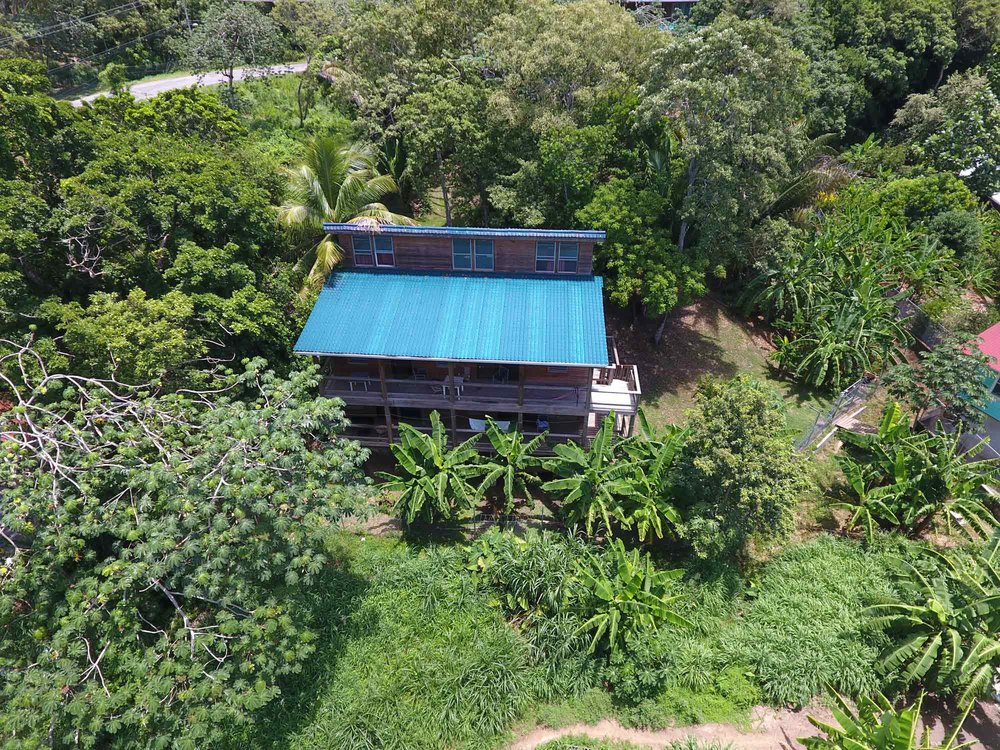 Pro house baclonies overlook lush plantlife.