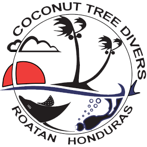Scuba Instructor Course | PADI IDC | Roatan | Honduras | Bay Islands
