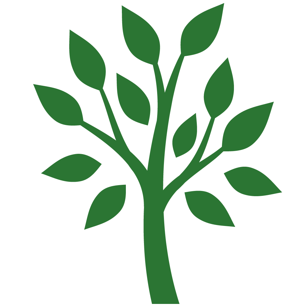 Plantings/Care