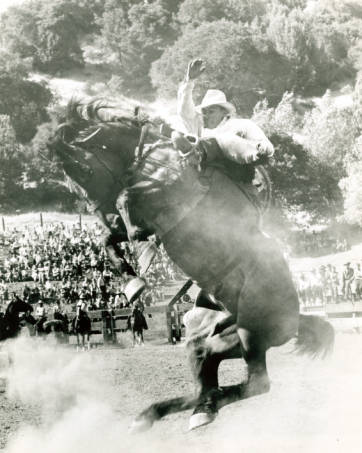 circle v rodeo brono 1950.jpg