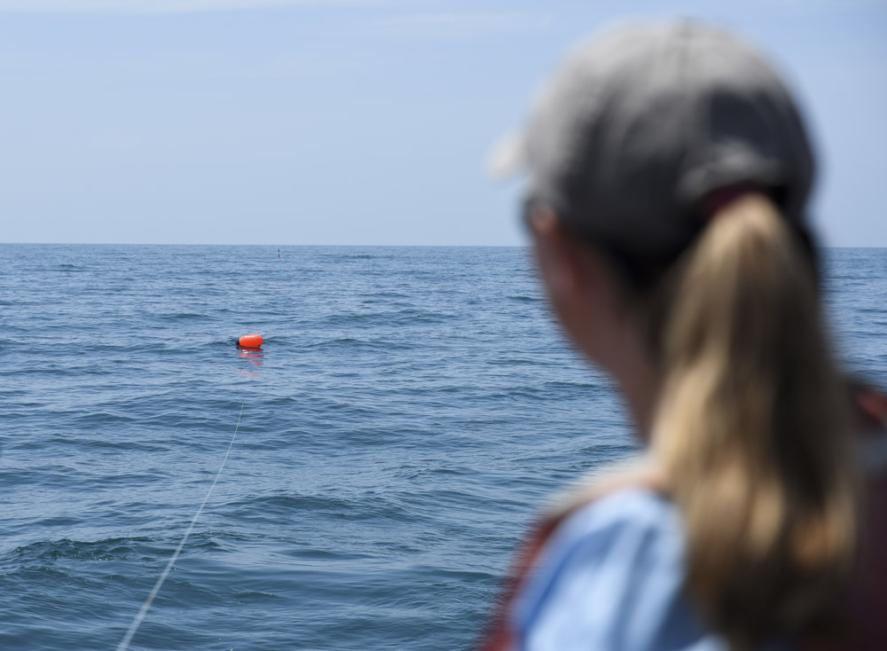 Jayne Gardiner, assistant professor of biology at the New College of Florida, watches one of the bright orange floaters on the mile-long mainline trail away from the R/V Bellows.