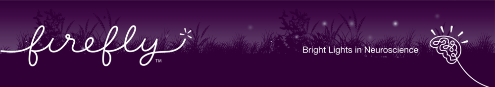 bright lights in neuroscience banner-06.png