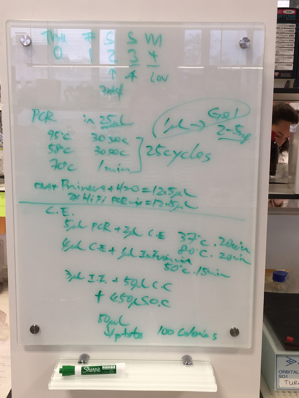 white board instructions - PCR_7844.jpg