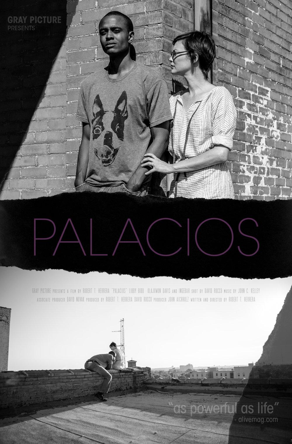 PALACIOS ONE SHEET 2018 (1).jpg