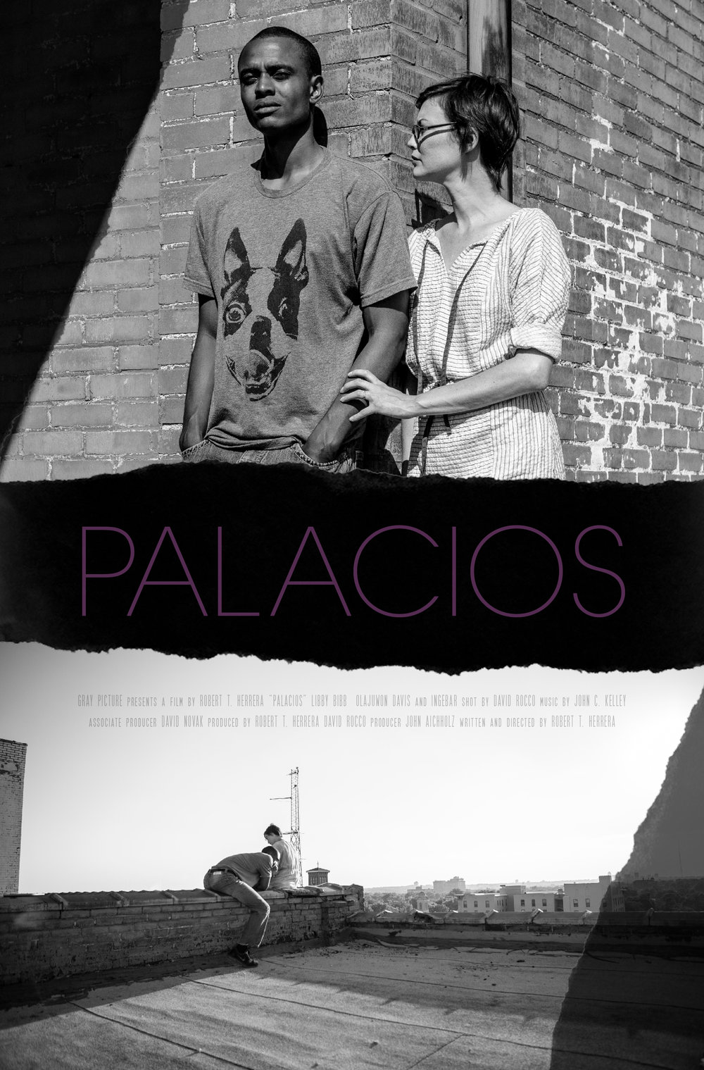 PALACIOS ONE SHEET NO Q (1).jpg