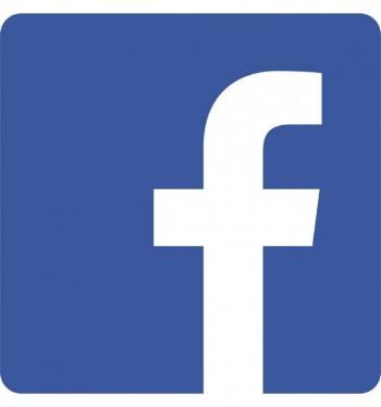 facebook_logo_detail-550x588.jpg