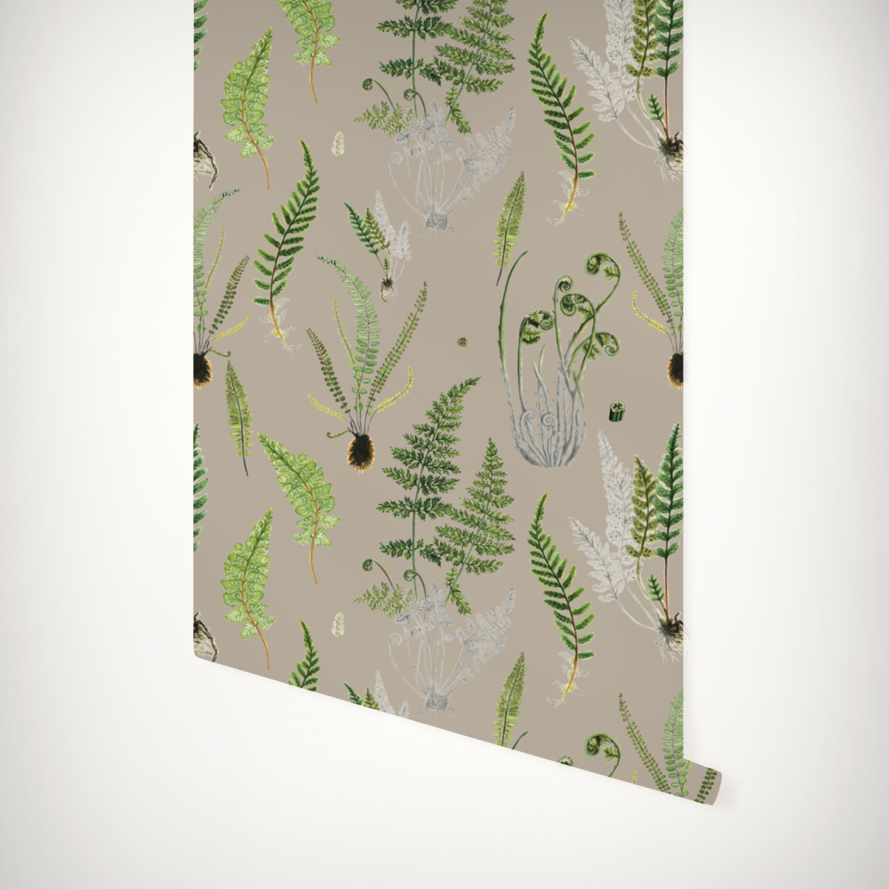 Ferns khaki roll.png