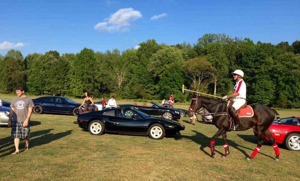 horsepower_polo