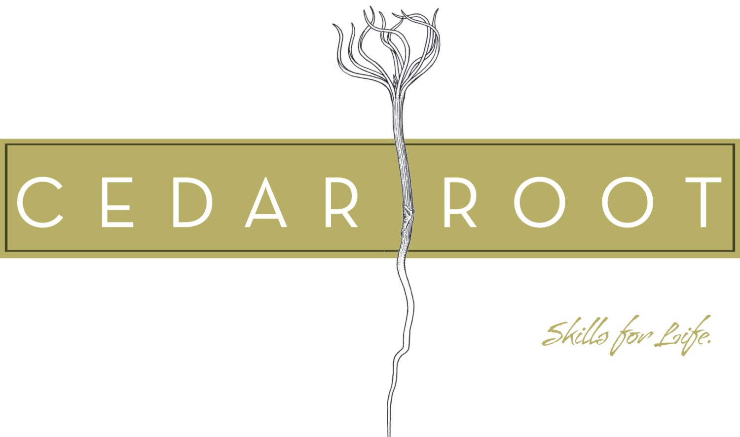 CedarRoot School