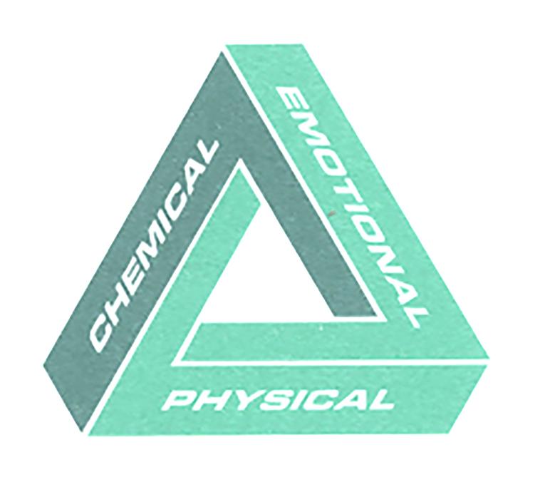 Wellness-Trianglegreen.jpg