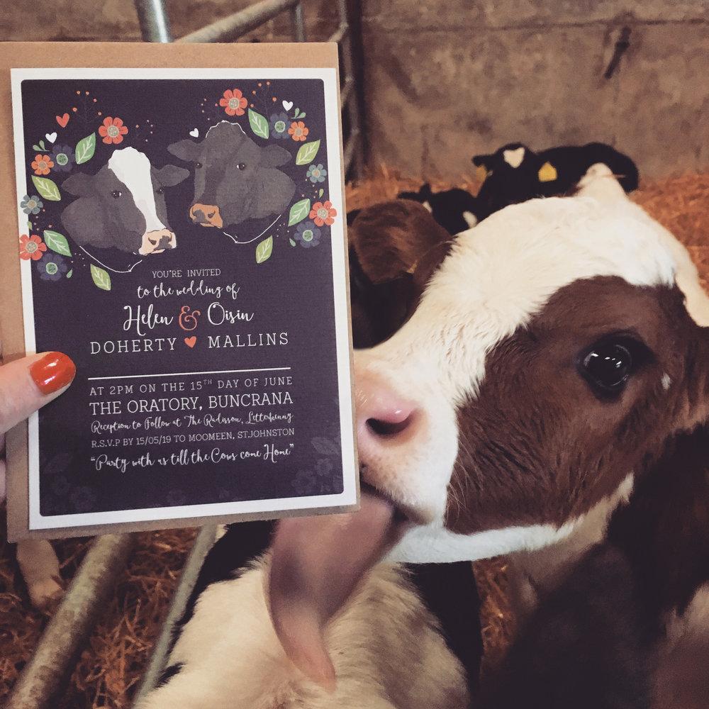 Aye Do - Cow invite web.jpg