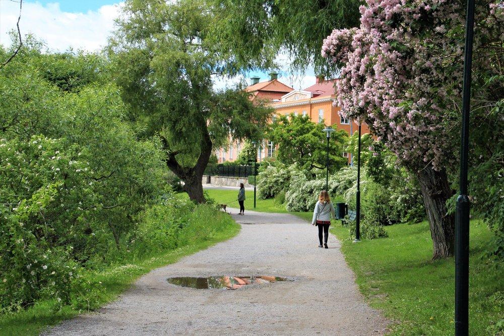 Walking the Shoreline of Nobelparken