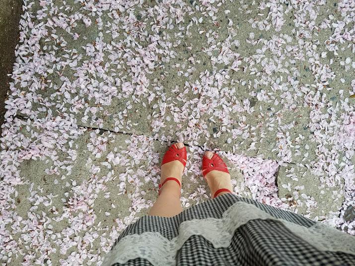cherryblossomsKLPYOGA.jpg
