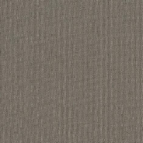 SPECTRUM GRAPHITE (492C)
