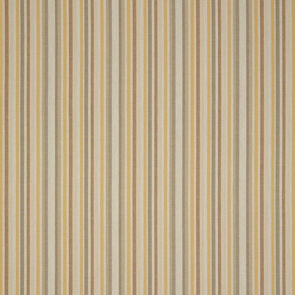 ASANA GOLD (504D)