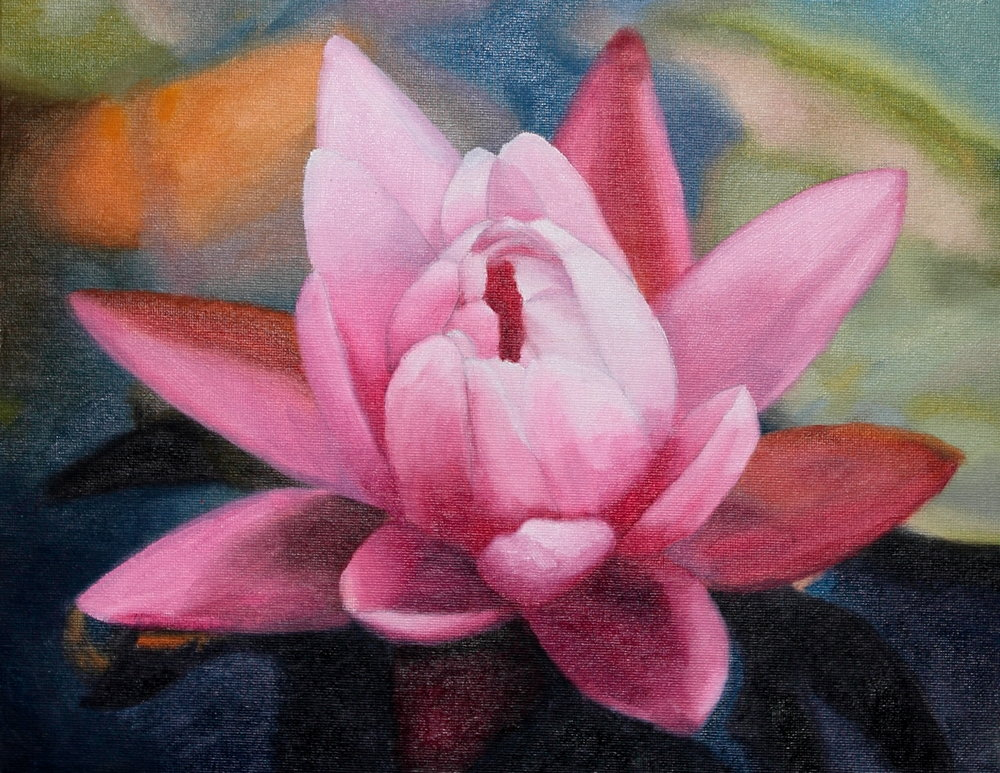 Water Lilly in Oil