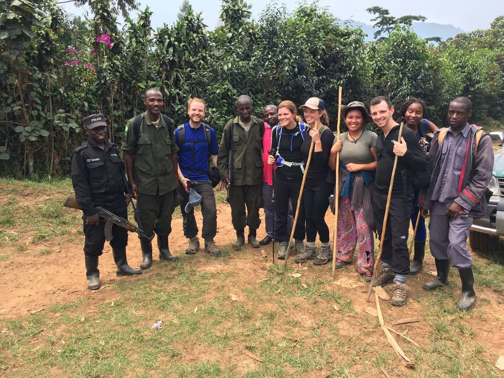 The Ultimate Guide To Mountain Gorilla Tracking In Uganda 21.jpeg
