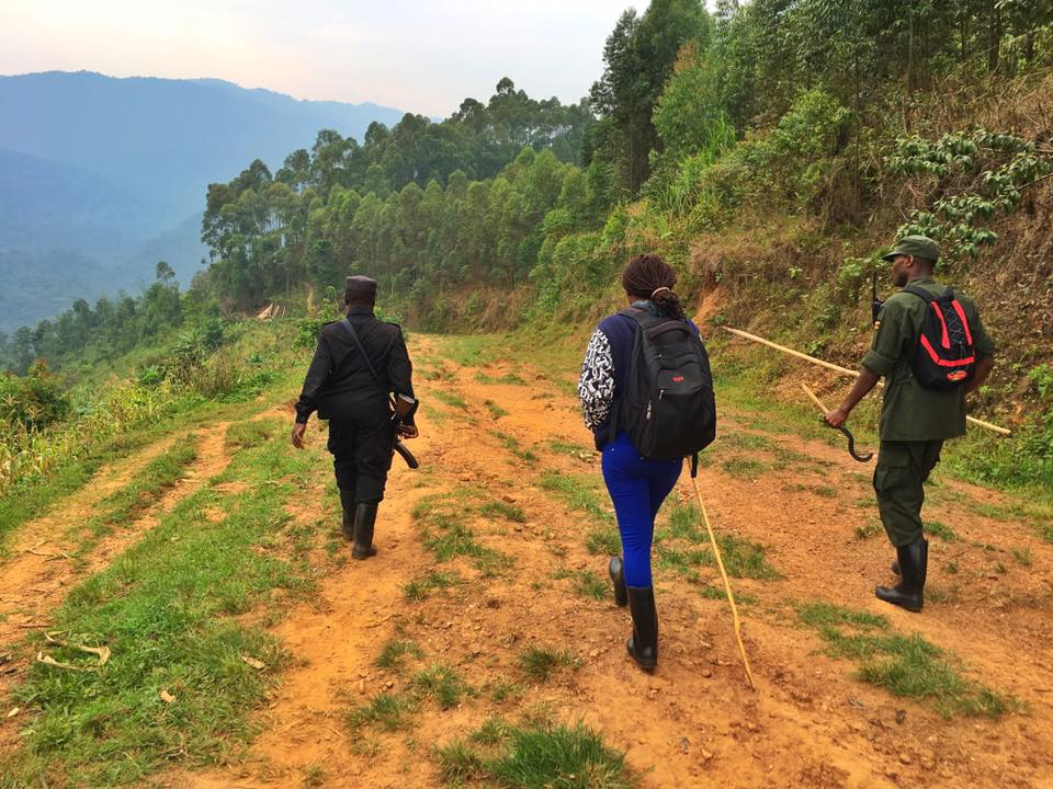 The Ultimate Guide To Mountain Gorilla Tracking In Uganda 24.jpg