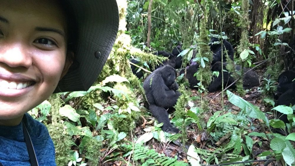 The Ultimate Guide To Mountain Gorilla Tracking In Uganda 14.jpeg