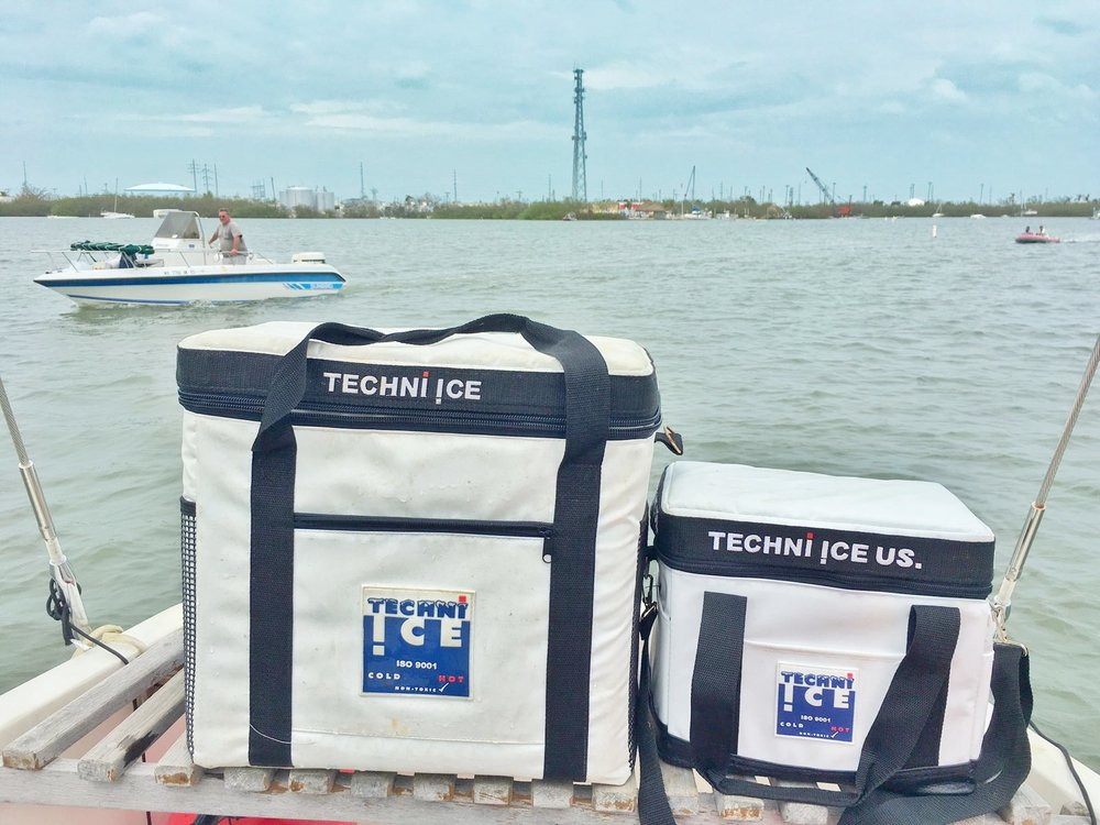 Techni Ice: Do We Really Need Ice On The Boat?