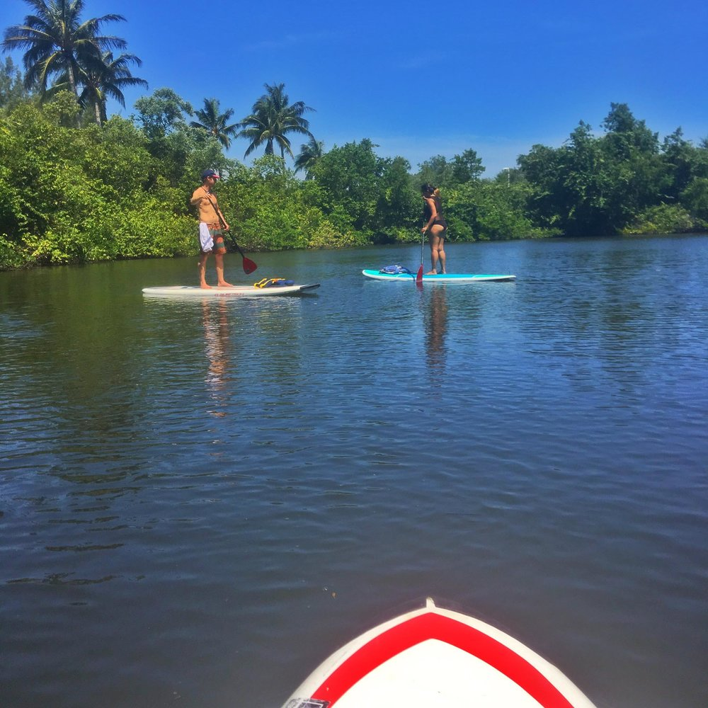 Activities For Couples In Florida Keys SeizetheKeys - The florida kayaking guide 10 must see spots for paddling