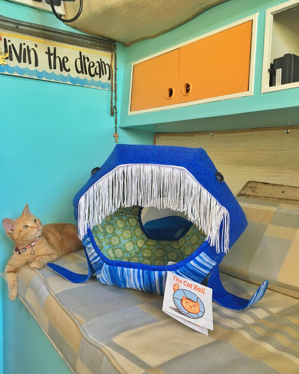 20 Purrfect Things of Captain Ahab The Sailor Cat and How You Can Buy Them For Your Purr Babies