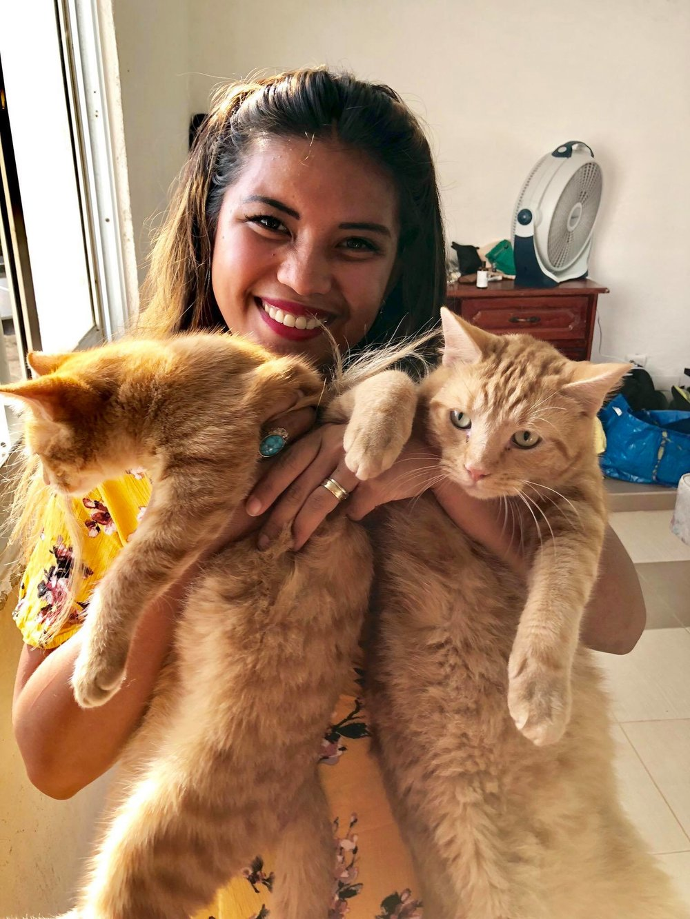 Liveaboard Life Day 245: Home sweet home - back in Luperon with my husband and the cats!