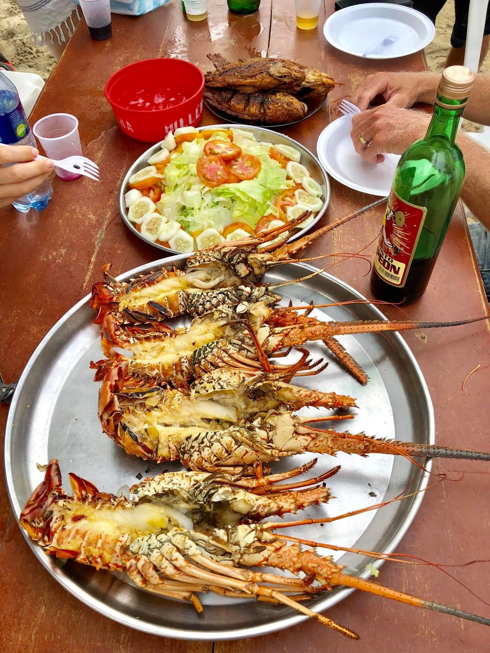 Liveaboard Life Day 255: Roadtrip and Lobster Day in Cambiaso Beach ❤️
