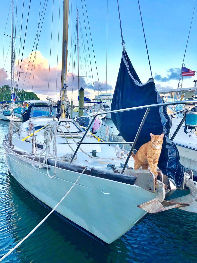 Sailing Life Day 294 Back to marina life10.jpg