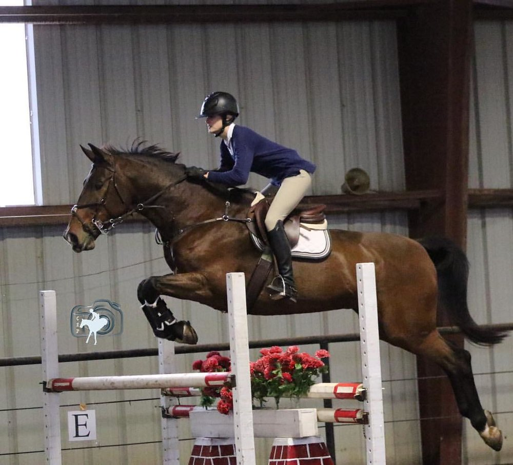 So thankful I had the opportunity to take two of my horses to the Julie Winkel Clinic. To say I learned a lot is an understatement. Thanks @amycoretz for this pic! And thank you @mindyrebeccaa @farewellfarm for being the best barn fam and putting this clinic together! - Shelby Leigh Sherba