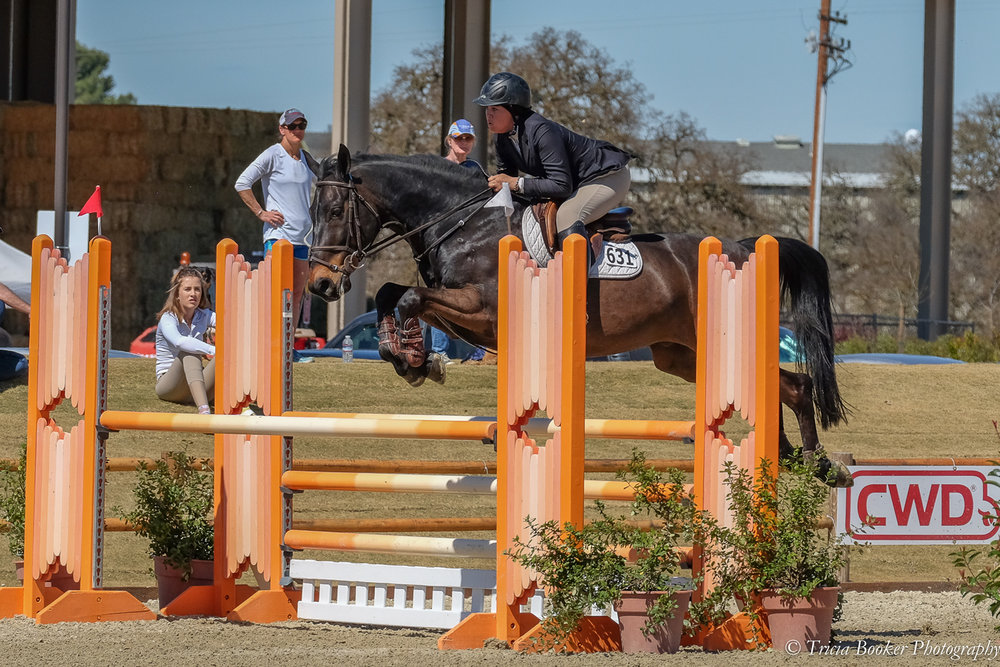 Dardam Q - 1.10m jumpers at the 2017 Central California Spring Classic Horse Show.