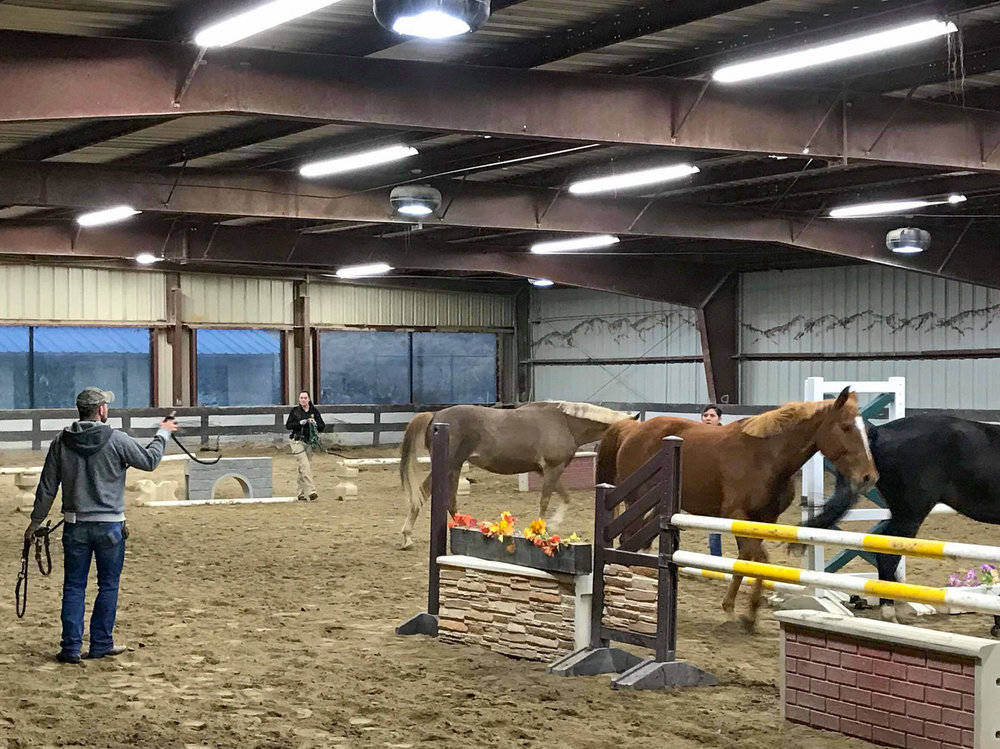 "Clinic attendees participated in a fun ""Team Penning"" competition to test their horse handling skills."