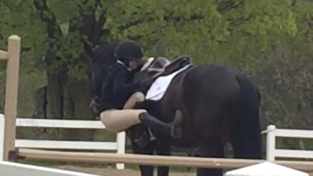 Lilly attempting to remount after walking the course in the Equitation section!