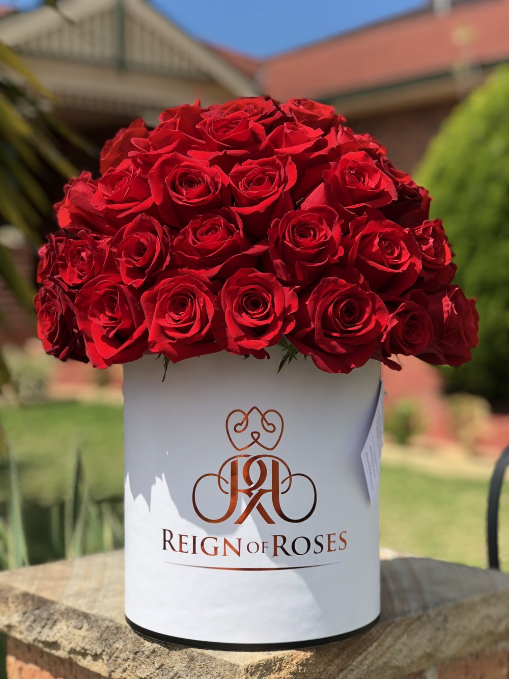 Classic Red 50 Roses