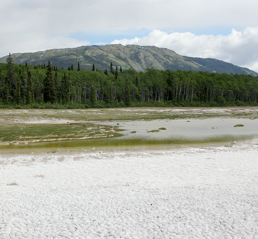 Hydromagnesite-magnesite playas are a unique Mg-carbonate forming environment and a natural analogue for carbon storage.  Monarch Mountain in the background is composed primarily of serpentinized harzburgite, i.e., ancient oceanic crust.